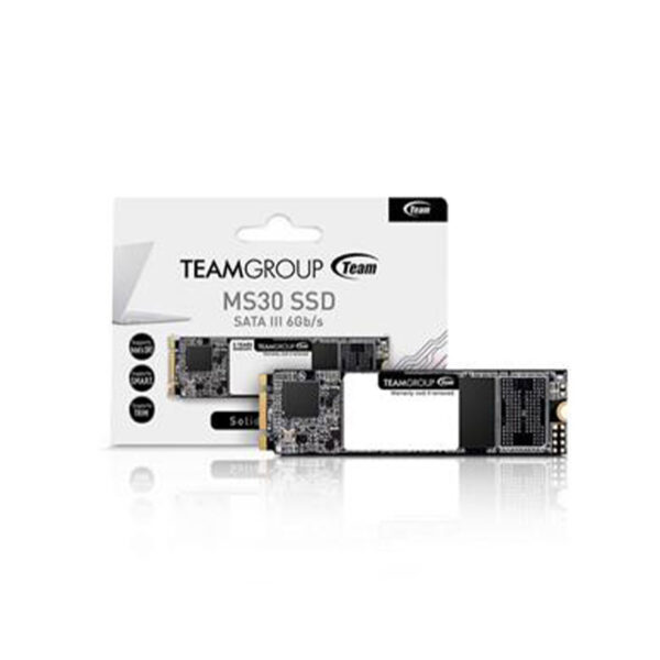 Teamgroup MS30 256GB Sata3